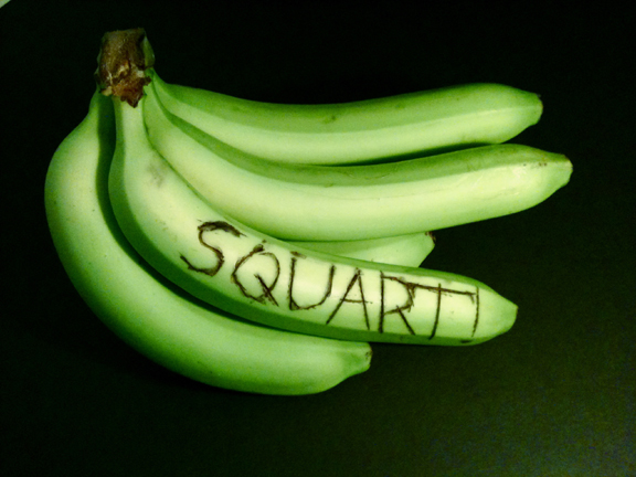 Bananas with the word 'squart' carved in them.