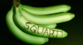 A bunch of bananas with the word Squart carved on it.